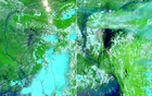 A combination of NASA Earth Observatory images by Lauren Dauphin shows the level of Bangladesh's inundation in navy blue on Jun 2 (left) and Jul 25 (right).