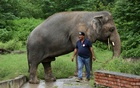 Amir Khalil, head of project development at FOUR PAWS International, walks beside Kaavan, an elephant at the Marghazar Zoo in Islamabad, Pakistan, September 4, 2020. REUTERS