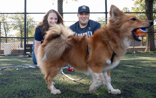 Angie and Ed Camus with their puppy, Marvel, at Victory Field in Queens on Sept 4, 2020. The New York Times