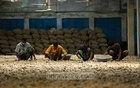 Potatoes are preserved in Faiz Cold Storage at Taltola in Munshiganj's Sirajdikhan Upazila. Workers are busy sorting out potatoes after three months of storage. Photo: Mahmud Zaman Ovi