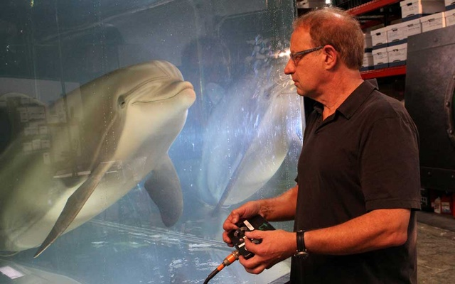 Walt Conti, founder and CEO of Edge Innovations, uses a handheld controller to move an animatronic dolphin in a tank at the company's warehouse in Fremont, California, U.S., September 30, 2020. REUTERS