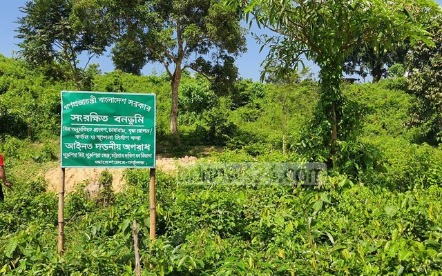 The Forest Department has put up a signboard stating that building structures in a conserved forest is illegal.
