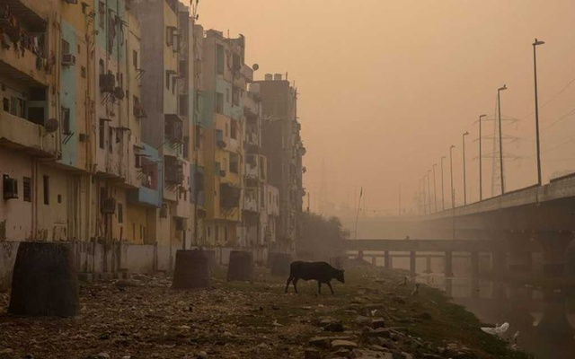 Delhi's air quality severe, relief unlikely soon