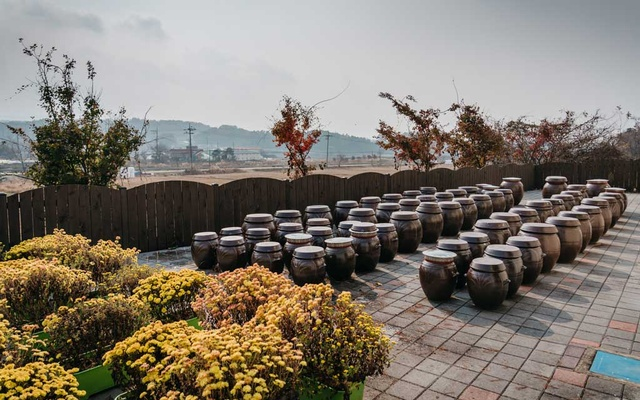 Clay pots in Goesan county in South Korea on Nov 7, 2020. Traditionally Koreans store kimchi in the pots where the lactic fermentation that occurs gives the kimchi its unique taste and texture. The New York Times