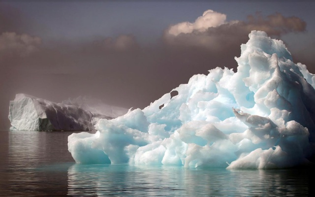 Icebergs float in a fjord near the south Greenland town of Narsaq July 28, 2009. REUTERS