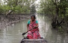 Parul Haldar, 39, whose husband died in a tiger attack during a fishing trip deep inside the forest, poses for a photograph as she rows her boat past small mangrove trees encircling the island of Satjelia in the Sundarbans, India, November 21, 2020.