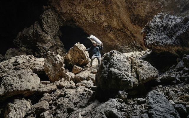 A villager collects bat droppings to sell as nitrogen-rich fertiliser, at the Khao Chong Phran cave near Photharam District in Ratchaburi Province, Thailand, Dec. 12, 2020. The cave complex at a temple in Thailand has long drawn tourists, pilgrims and guano collectors. Now, scientists have arrived, looking for any potential links to the coronavirus. (Adam Dean/The New York Times)