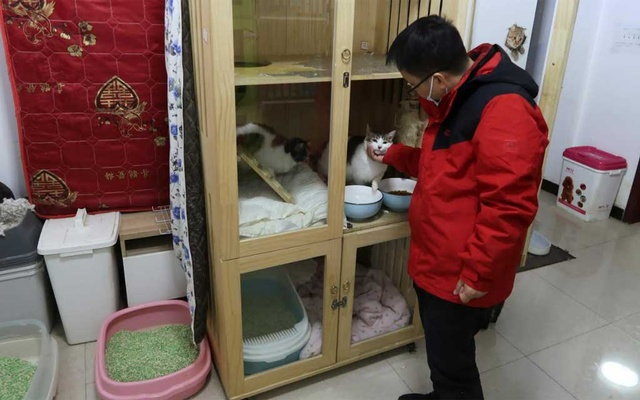 Du Fan, president of an animal protection association that rescued pets during the lockdown last year, interacts with a cat while posing for media at his association's cat sanctuary in Wuhan, following the coronavirus disease (COVID-19) outbreak, in Wuhan, Hubei province, China January 22, 2021. REUTERS