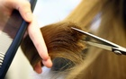 You're not imagining it: The pandemic is making your hair fall out