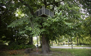 "A treehouse in Christchurch, New Zealand's ""red zone,"" Feb 14, 2021. Cornell Tukiri/The New York Times"