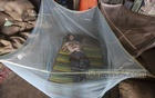 A man uses a mosquito net to sleep in Dhaka's Karwan Bazar wholesale market amid a rise in attacks by the insects. Photo: Asif Mahmud Ove