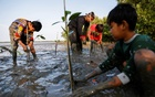 Samsudin, 50, plants mangrove trees with local children at Tiris beach in Pabeanilir village, Indramayu regency, West Java province, Indonesia, March 11, 2021. REUTERS