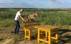 Aleksandr Dmitriev plays with his family pet Messi, a two-year-eight-month-old cougar, in the town of Penza, Russia June 21, 2018. REUTERS