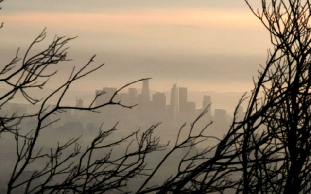 Downtown Los Angeles is seen behind a tree burned by wildfire before expected heavy rains, as the coronavirus disease (COVID-19) continues, in Los Angeles, California, US, January 28, 2021. REUTERS/Lucy Nicholson