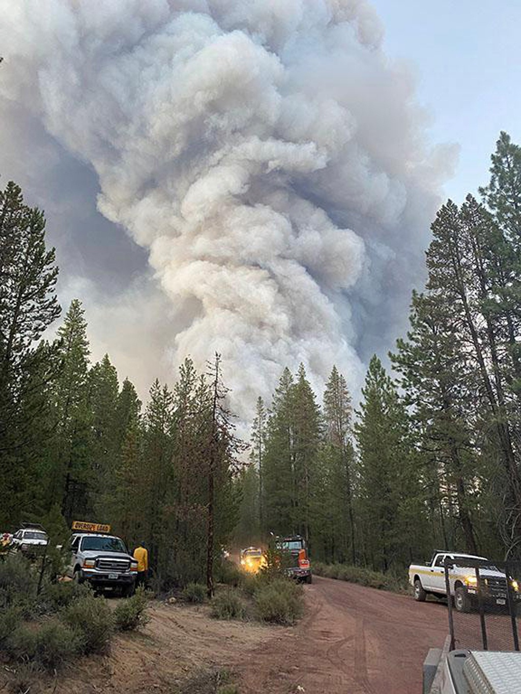 A photo provided by the US Forest Service shows a column of smoke rising from the Bootleg Fire near Bly, Oregon, on July 7, 2021. (US Forest Service via The New York Times)