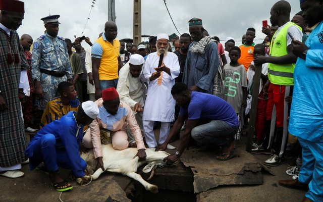 Samassi Inza, Imam of the Grand Mosque of Adjame, prepares to slaughter a sheep after the prayers marking the Muslim festival of sacrifice Eid-ul-Azha in Abidjan, Ivory Coast, on Tuesday, July 20, 2021. REUTERS
