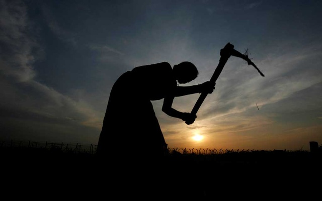 A farmer working in a paddy field is silhouetted against the setting sun on the outskirts of Agartala, capital of India's northeastern state of Tripura Aug 9, 2010. REUTERS/Jayanta Dey