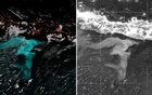 Satellites spot oceans aglow with trillions of organisms