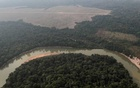 Indigenous leaders push new target to protect Amazon from deforestation