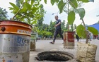 Roadside nurserymen put plants on the middle of the street to alert drivers to dangers posed by an uncovered manhole outside T&T High School in Dhaka's Motijheel. Photo: Asif Mahmud Ove