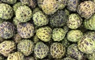 Sugar apples are displayed in a market in Recife June 30, 2014. REUTERS