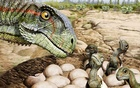 A nest of the Jurassic Period Patagonian plant-eating dinosaur Mussaurus patagonicus with newborns and a parent is seen in an undated artist's rendition. Jorge Gonzalez/Handout via REUTERS